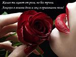 Желая ти живот от рози